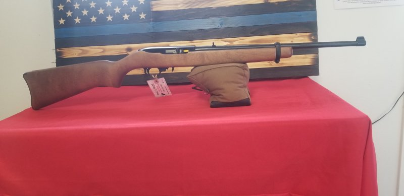 Ruger 10/22 Picture