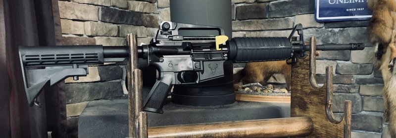 Stag-15 M4 Picture